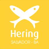 Logo da heringsalvador